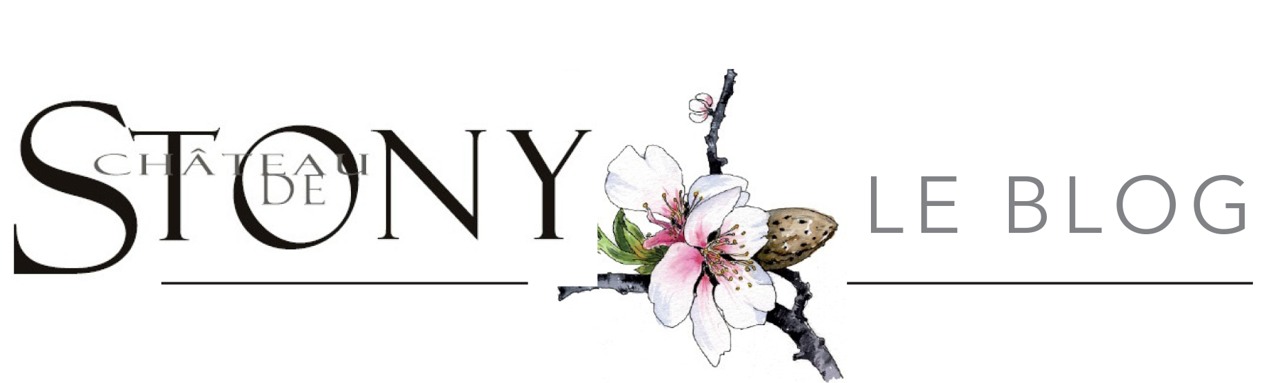 Le blog de Stony